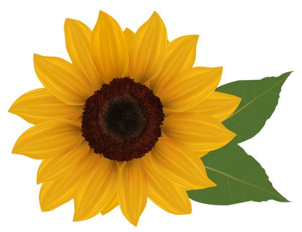 pin deb denson crafts sunflower