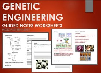 genetic engineering worksheet with answers interactive notebook interactive notebooks. Black Bedroom Furniture Sets. Home Design Ideas