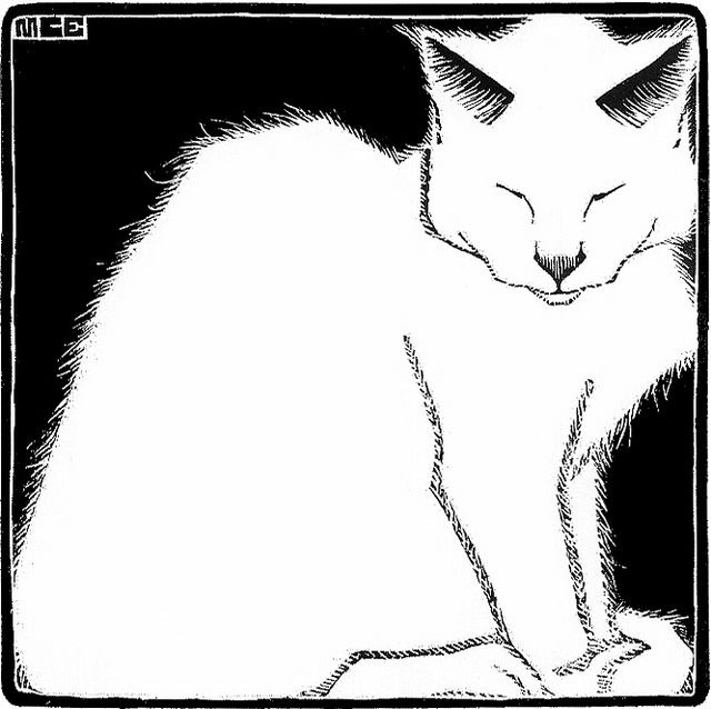 White Cat Art