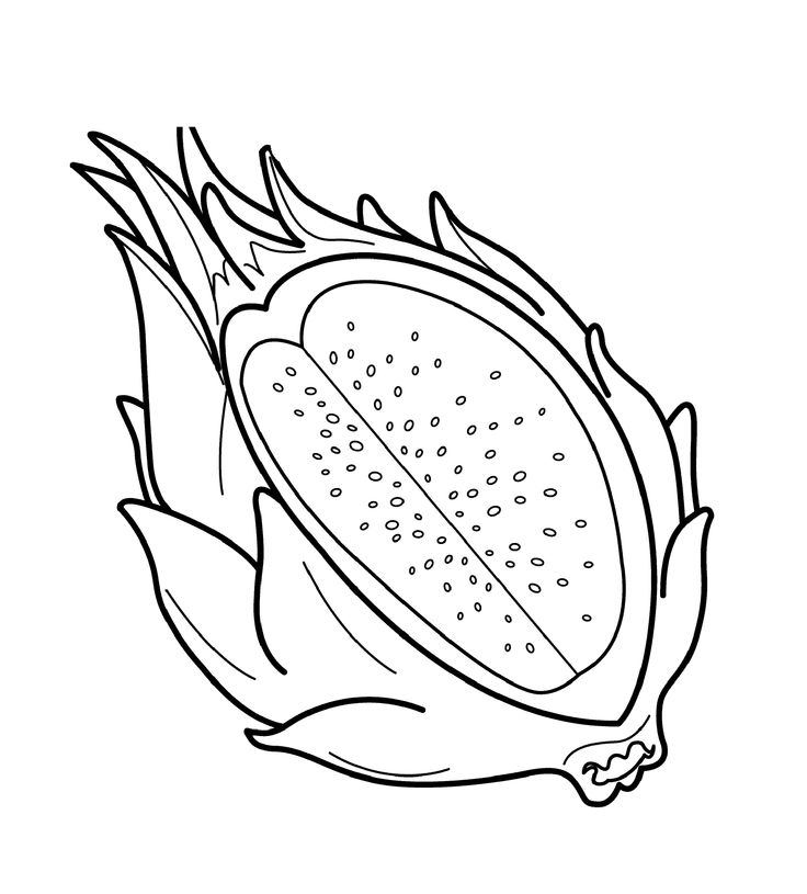 Dragon Fruit Coloring Pages For Kids Printable Fruits
