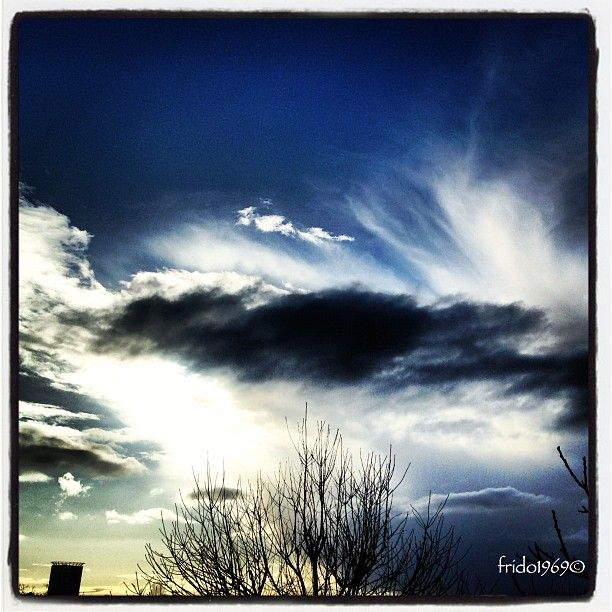 Help vote my picture as Instacanvas photo of the week
