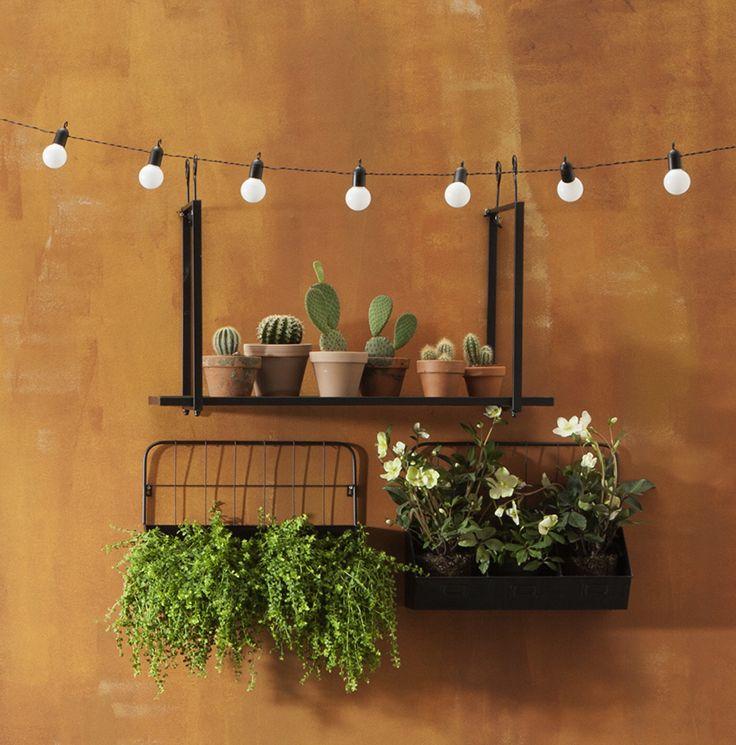 119 best tuin images on pinterest homes apartment for Wandrek tuin