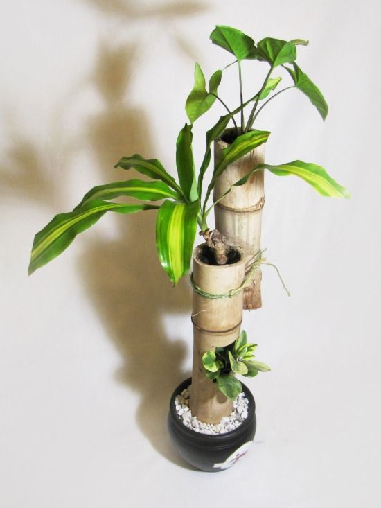 Decoracion de interiores con plantas ca as de bambu for Adornos para plantas con llantas