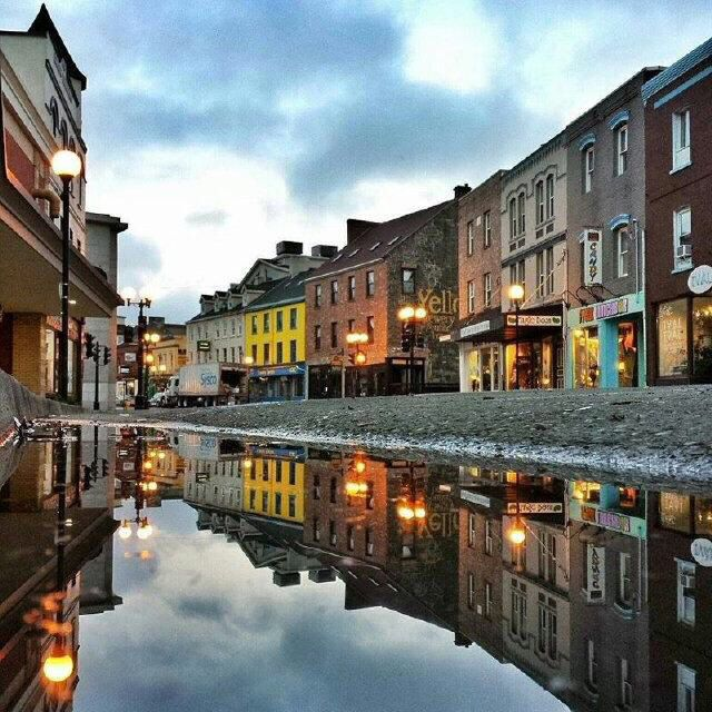 Reflection in the rain puddle taken by Shane Howard