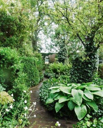 Längs häckarna vindlar sig gången som på klassiskt vis avslutas med en utsiktspunkt, en vista. Murgröna kryper på marken och klättrar i träden.