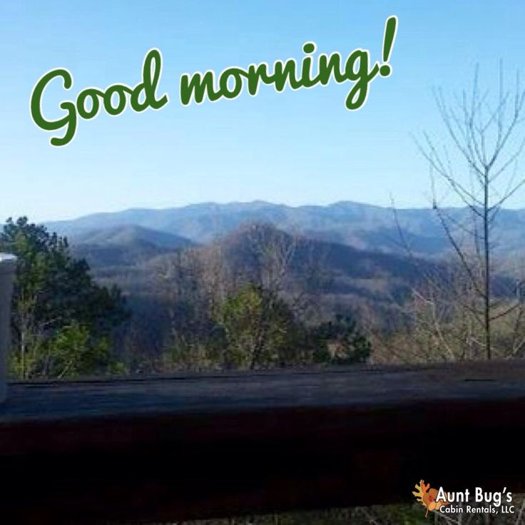 Good Morning!!! | Aunt Bug's Cabins | Smoky mountains ...