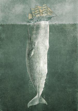 Moby's Revenge - artwork by Terry Fan
