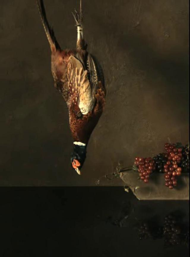 ORI GERSHT | Falling Bird, 2008. HD film, 4 minutes, 30 seconds
