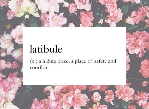 I'm currently very, very far out of my comfort zone. Can haz latibule nao?