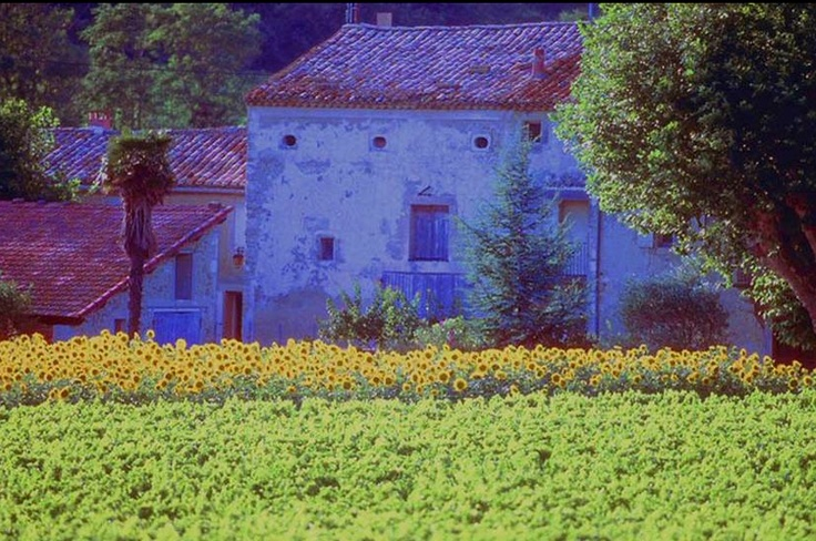 39 best french countryside images on pinterest french for French countryside homes