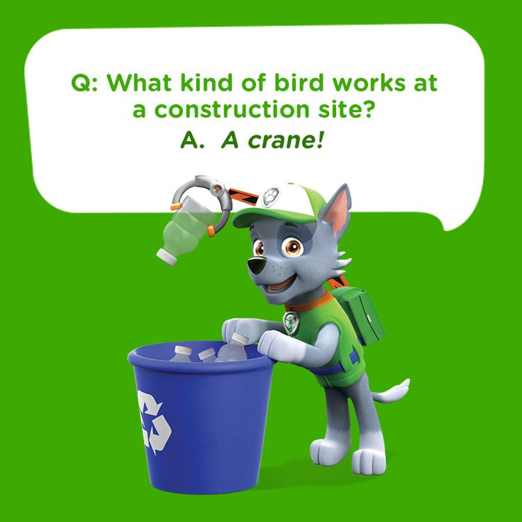Tell this silly kid's joke on a long car ride:   What kind of bird works at a construction site?  A crane!