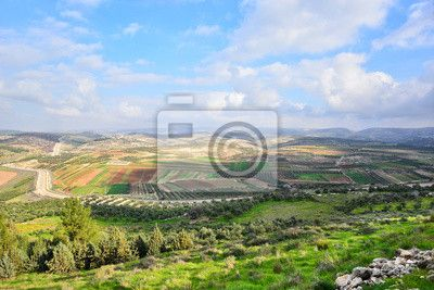 Choose a wall mural  , nature, view - israeli landscape. PIXERS wall murals made of great fabrics. Choose artistic photos from our catalog.