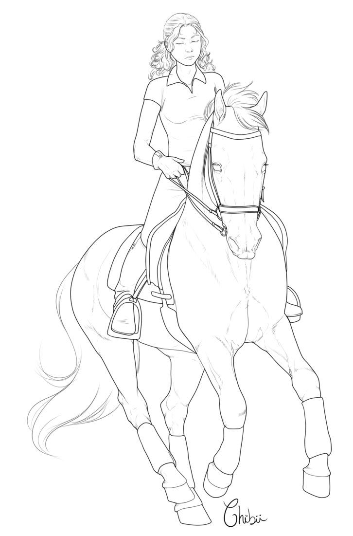 82 best horse line art how to images on pinterest horses