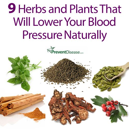 herbs for blood pressure