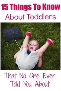 Parents of toddlers know how incredibly sweet and maddening they can be. I for one was never prepared for the emotional roller coaster raising toddlers can be. Here are 15 things to know about toddlers...