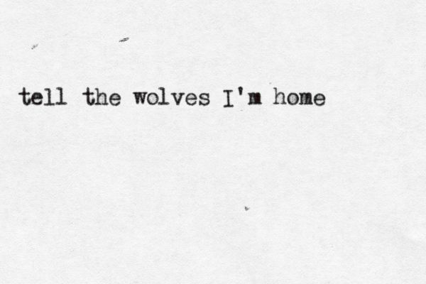 {I am home in the wild, the forest of the deep, the wolves keep me company and play as I sleep, I am the hunter of hunters, a child of the wood, I sniff out the prey and run with the wolves. Tell the wolves I am home. - AH}