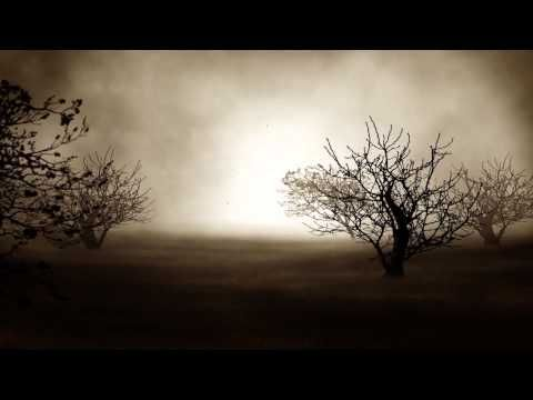 Fondo Video Background Full HD Mysterious Night - YouTube