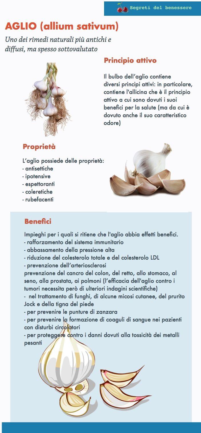 L'aglio ha, per tradizione, numerose proprietà benefiche.In polvere, estratti o compresse, la scienza conferma i suoi numerosi effetti benefici sulla salute
