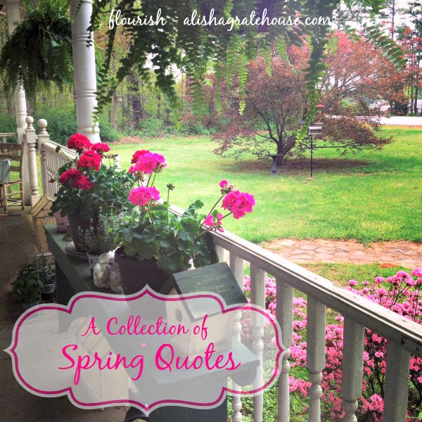 A Collection of Spring Quotes A Collection of Spring Quotes | Flourish | <a href=