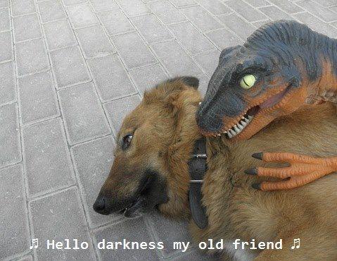 Hello darkness...