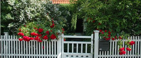 Staket staket rosor : Staket och grind | Fence | Pinterest