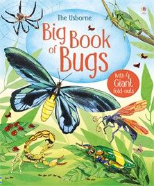 The Usborne Big Book of Bugs