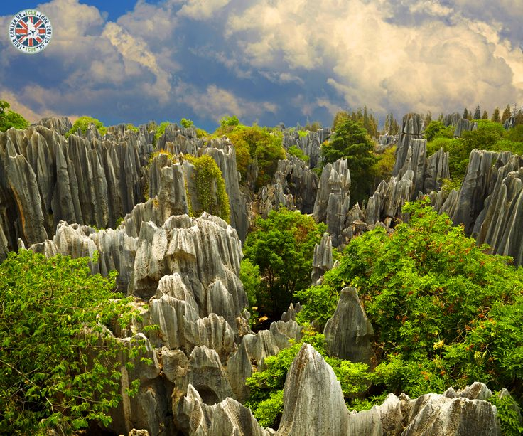 Stone Forest in Yunnan province, China  |    #yunnanprovince #stoneforest #tourdestination #tourism #holiday #tours #tourpackages #holidaypackages #placestovisit #citybreaks #shortbreaks #tourdeals #touristattractions #tourcenter #tourcenteruk #touragentsinuk  |    ☎ Contact us: 0203 515 9024  |   📱 WhatsApp us: 0786 002 6636  |   💻 https://www.tourcenter.uk/destinations/asia/china?utm_source=pinterest&utm_medium=social&utm_campaign=stone-forest-in-yunnan-province-china&utm_term=china