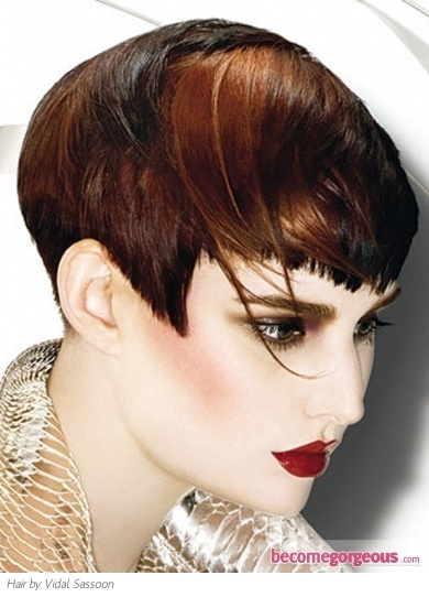 two tone hair styles 1000 ideas about two toned hairstyles on 4647 | 5cae287419f112ea89641c94806b92d4