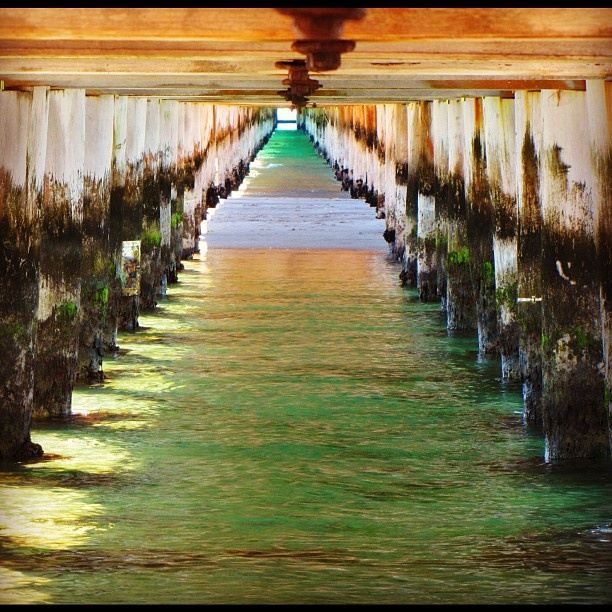 """Underneath the pier - mornington peninsula"