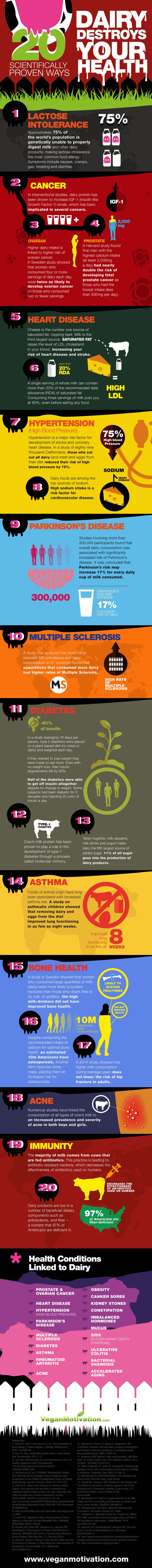 dairy facts infographic