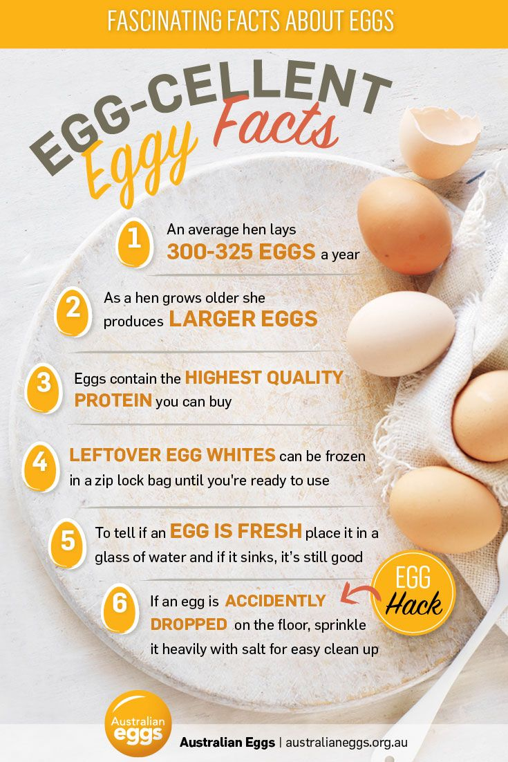 6 Eggs Cellent Egg Facts Myfoodbook Food Stories Egg Facts Egg Nutrition Facts Healthy Food Facts