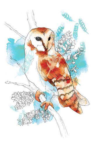 'Barn Owl' by Willa Gebbie