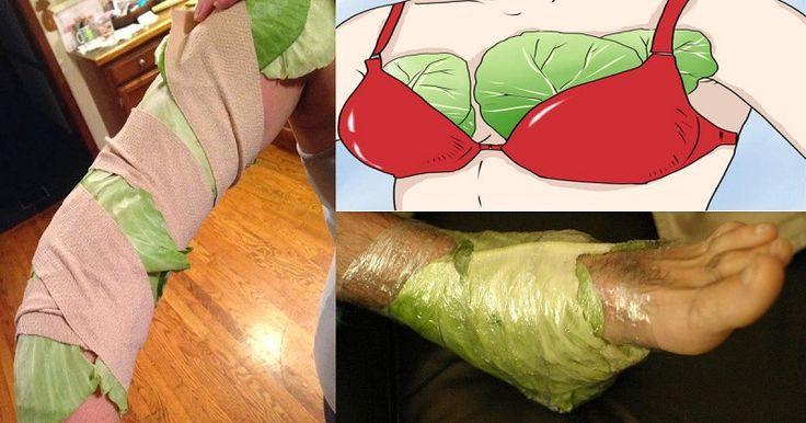 Après avoir lu ceci, vous allez sûrement commencer à mettre des feuilles de chou sur votre poitrine et vos jambes !