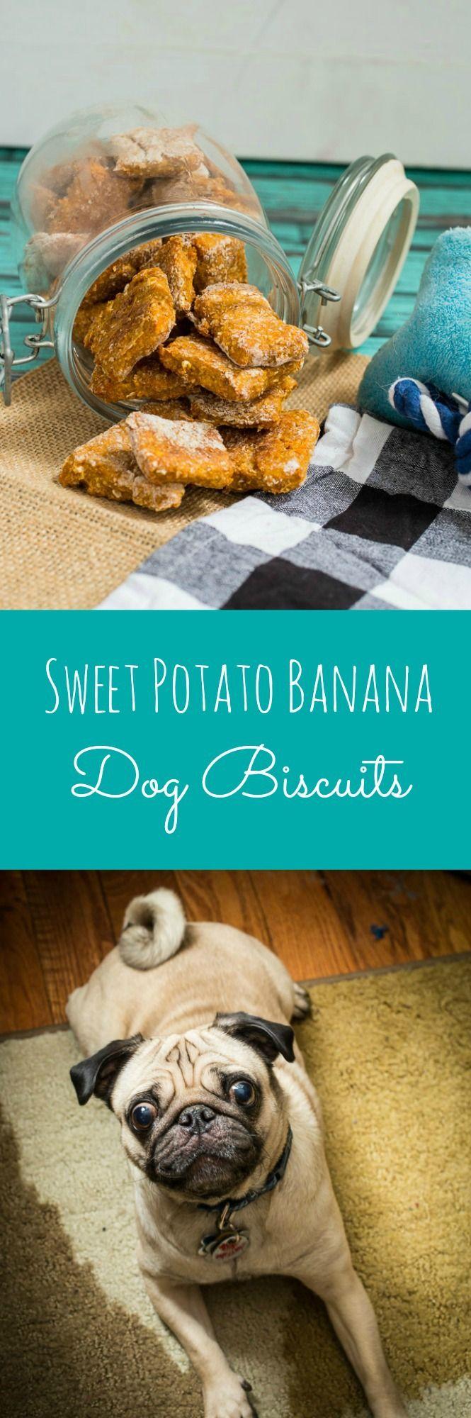 Sweet Potato Banana Dog Biscuits   girlinthelittleredkitchen.com