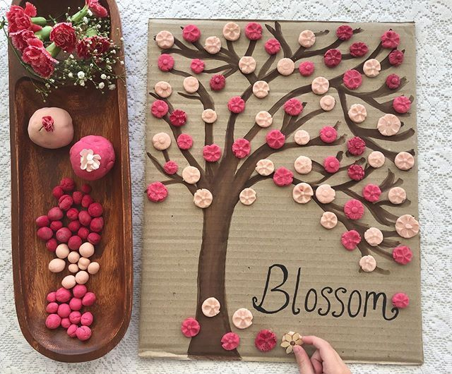 Katie And Kirsty On Instagram B L O S S O M There S Just Something Special About Cherry B Cherry Blooms Blossom Trees Cherry Blossom Tree