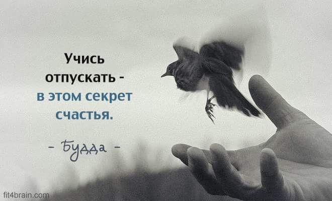 14570279_1254447054615900_2094039749143262733_n.png.jpg (660×400)