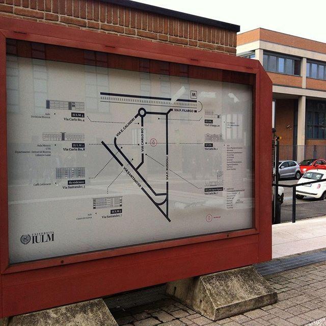 #infographic #iulm #milano #pietralocale #maps #map #graphic #graphicdesign #università #infographics #infodesign