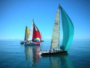 Clipper Cup Sailing Regatta #portdouglas #pdcarnivale