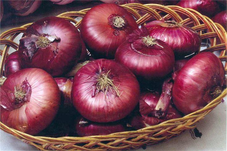 КАК ЛЕЧИТЬ ПЕЧЕНЬ СИНИМ ЛУКОМ С САХАРОМ. Лук – популярный, полезный овощ, что используется как для приготовления пищи, так и в лекарственных целях. Мощными целебными свойствами обладает синий лук (кр…