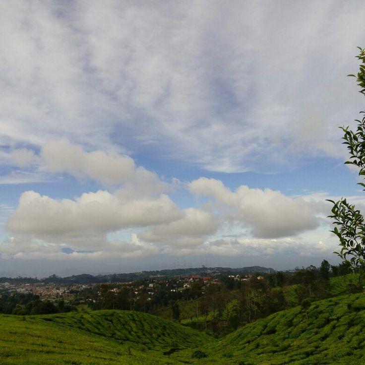 Wonderful place in Lembang