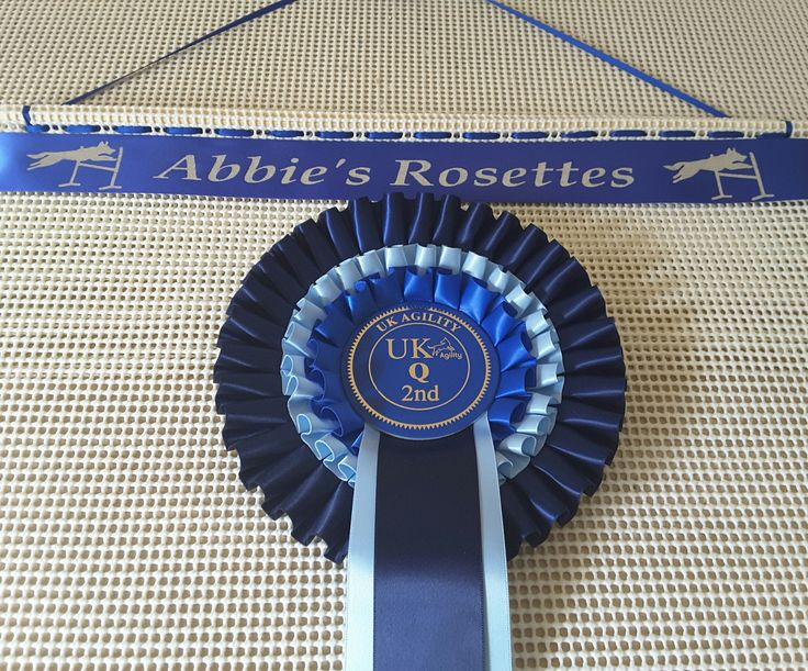 Dog show rosettes ideas for display