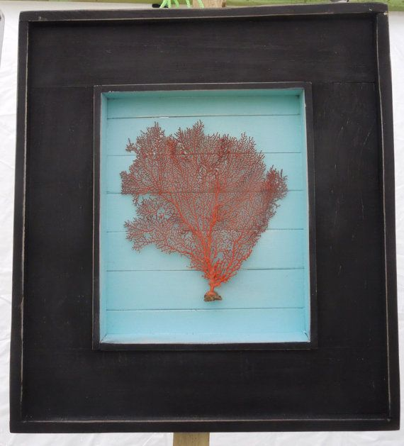 beach decor coastal picture frame with sea fan by greenlifeusa 8000 large shadow box