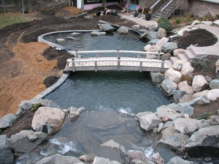 Best 25 pond construction ideas on pinterest swimming for Garden pond design and construction