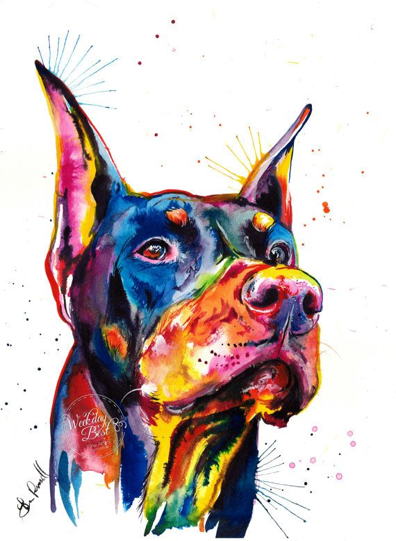 Colorful Doberman Pinscher Art Print Print of my by WeekdayBest