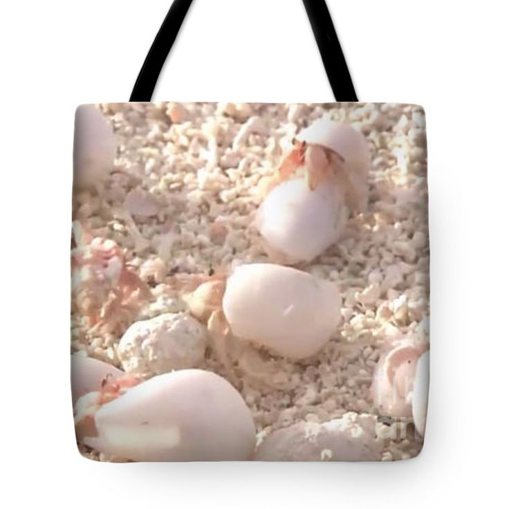 """Creating organic calcium at the beaches of Maldives Tote Bag by NAVIN JOSHI (18"""" x 18"""").  The tote bag is machine washable, available in three different sizes, and includes a black strap for easy carrying on your shoulder.  All totes are available for worldwide shipping and include a money-back guarantee."""