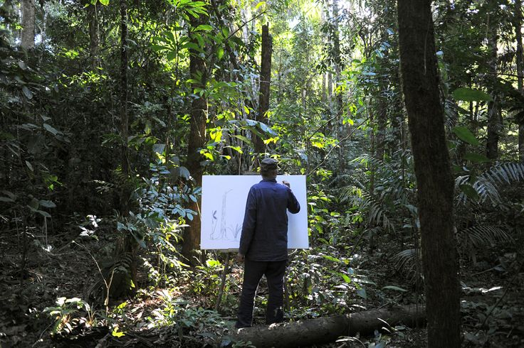 Francis Hallé : le rôle des arbres