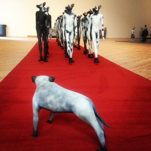 African Wild Dog sculptures by Jane Alexander (South Africa) at the Contemporary Arts Museum - Houston (via: CAMH)