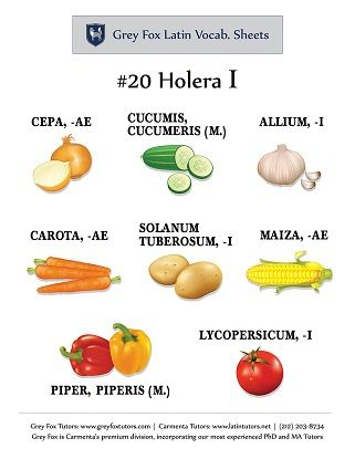 This is a Latin visual vocabulary sheet with vocab words about vegetables. It can be used in the Latin or Classics classroom with spoken Latin or Latin conversation or as a supplement for a variety of textbooks, such as Wheelock, Ecce Romani, Cambridge, Oxford, Minimus, Lingua Latina, and many others.