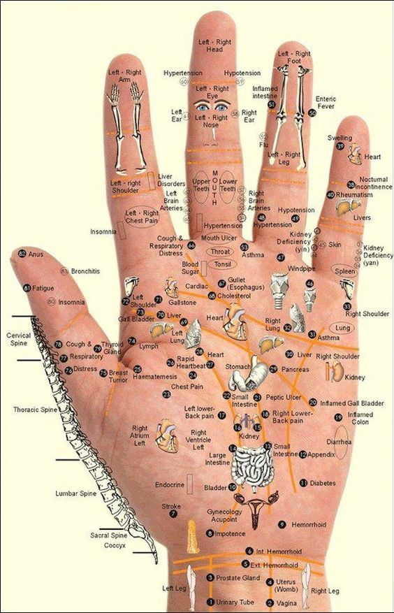 Gráfico y Técnicas de reflexología en manos y masaje de los puntos de Meridian