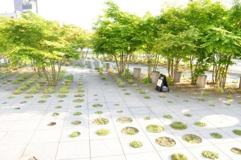 Small roofgarden at Tokyo University by Michel Desvigne